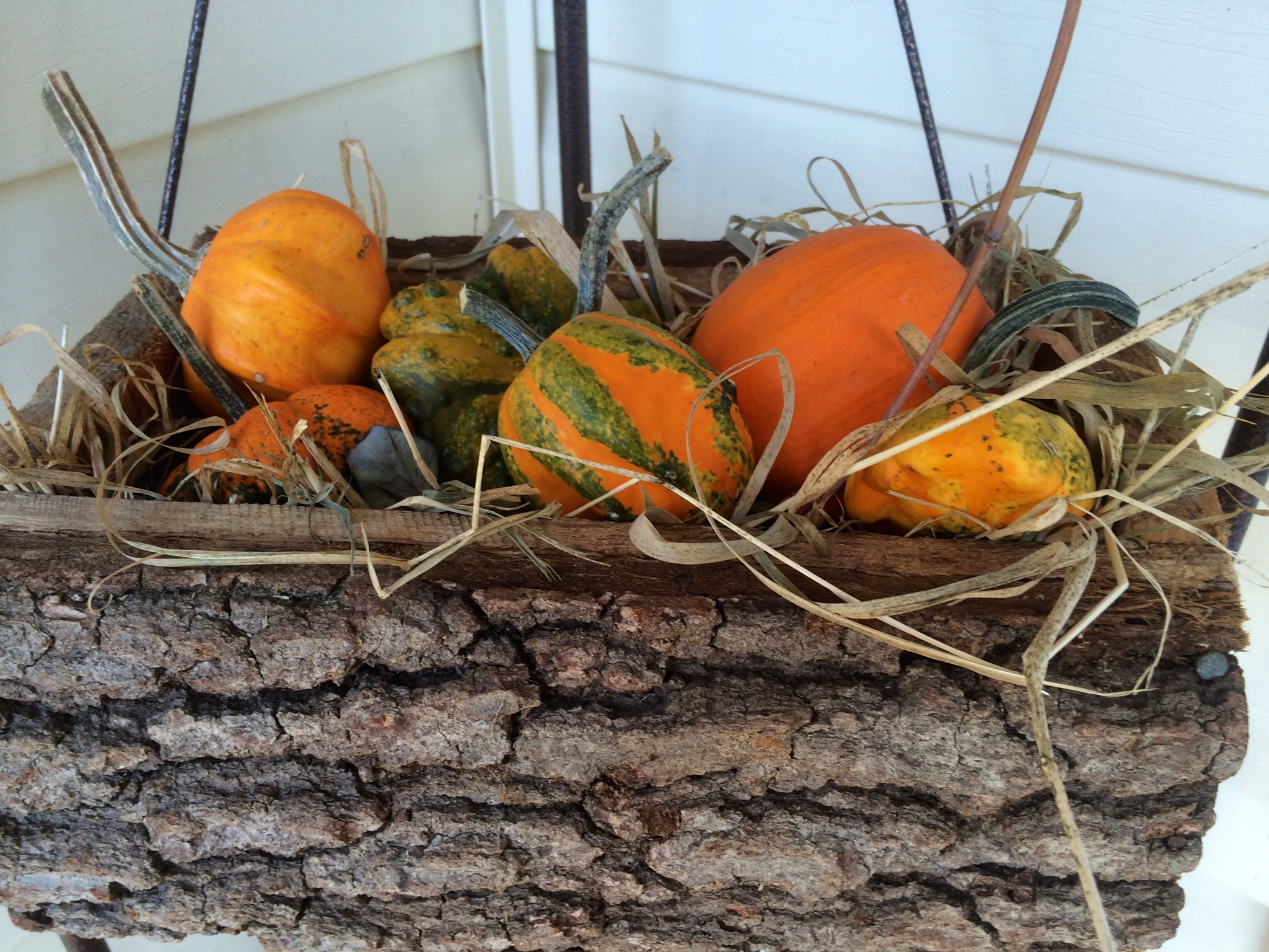 Gourds on the front porch