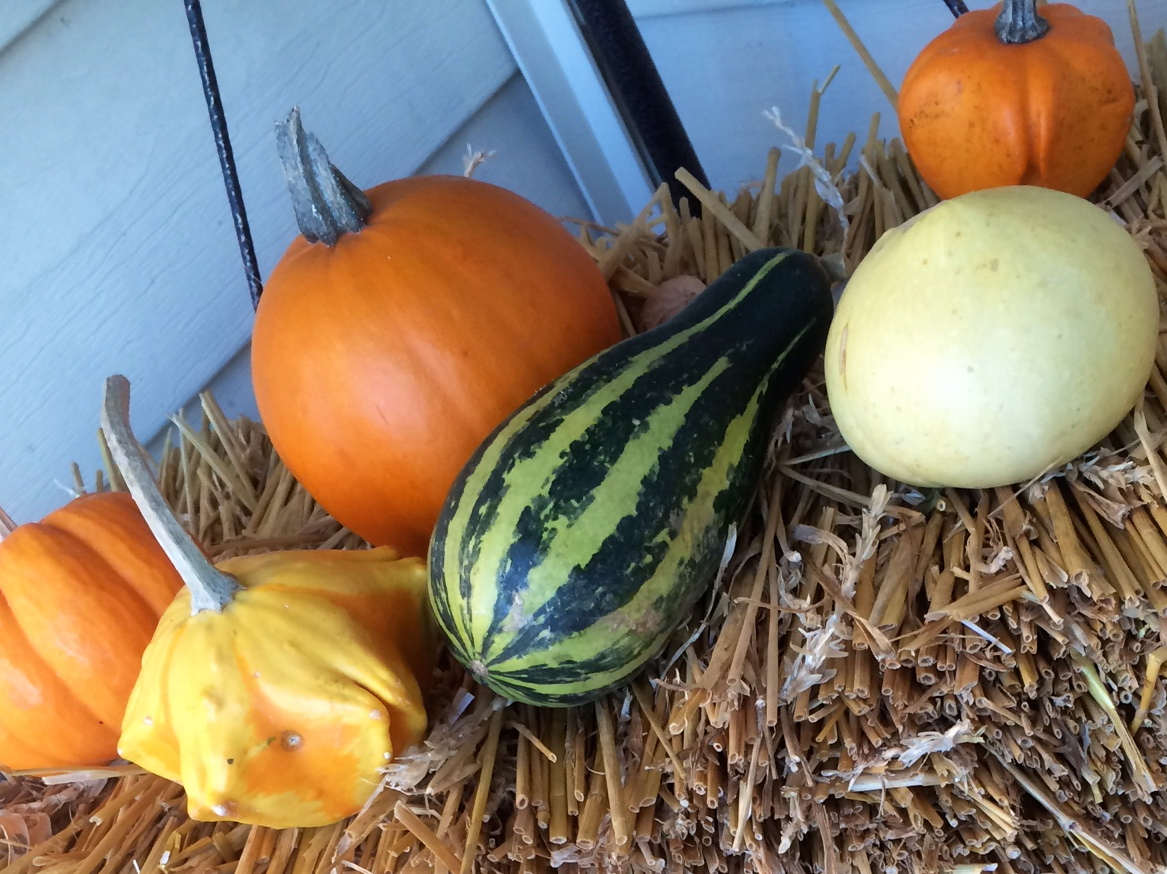 Thanksgiving decorations on the front porch