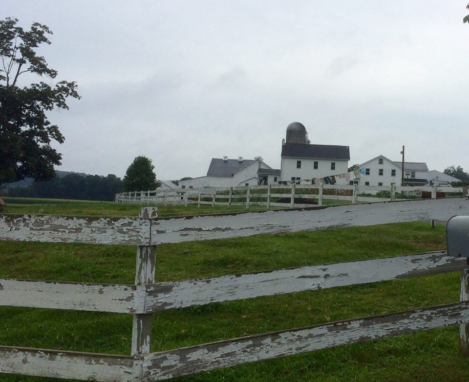 View Of Amish Farm From The Road